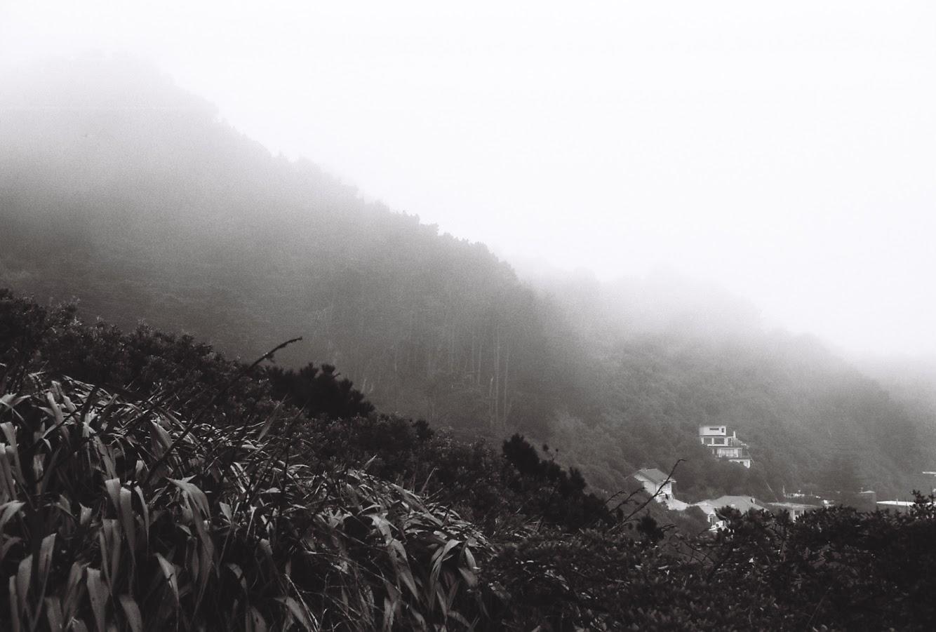 Misty view of Wellington
