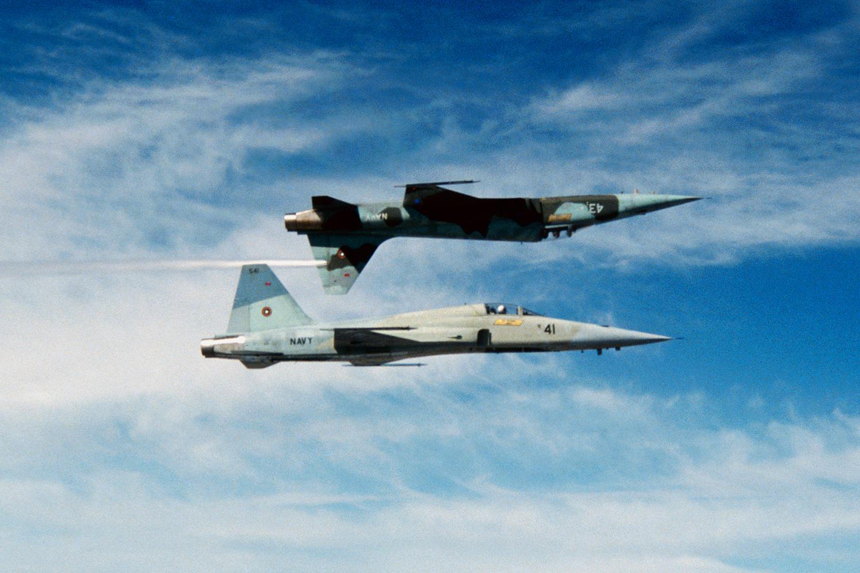 Northrop F-5Es (Pic: David Baranek)