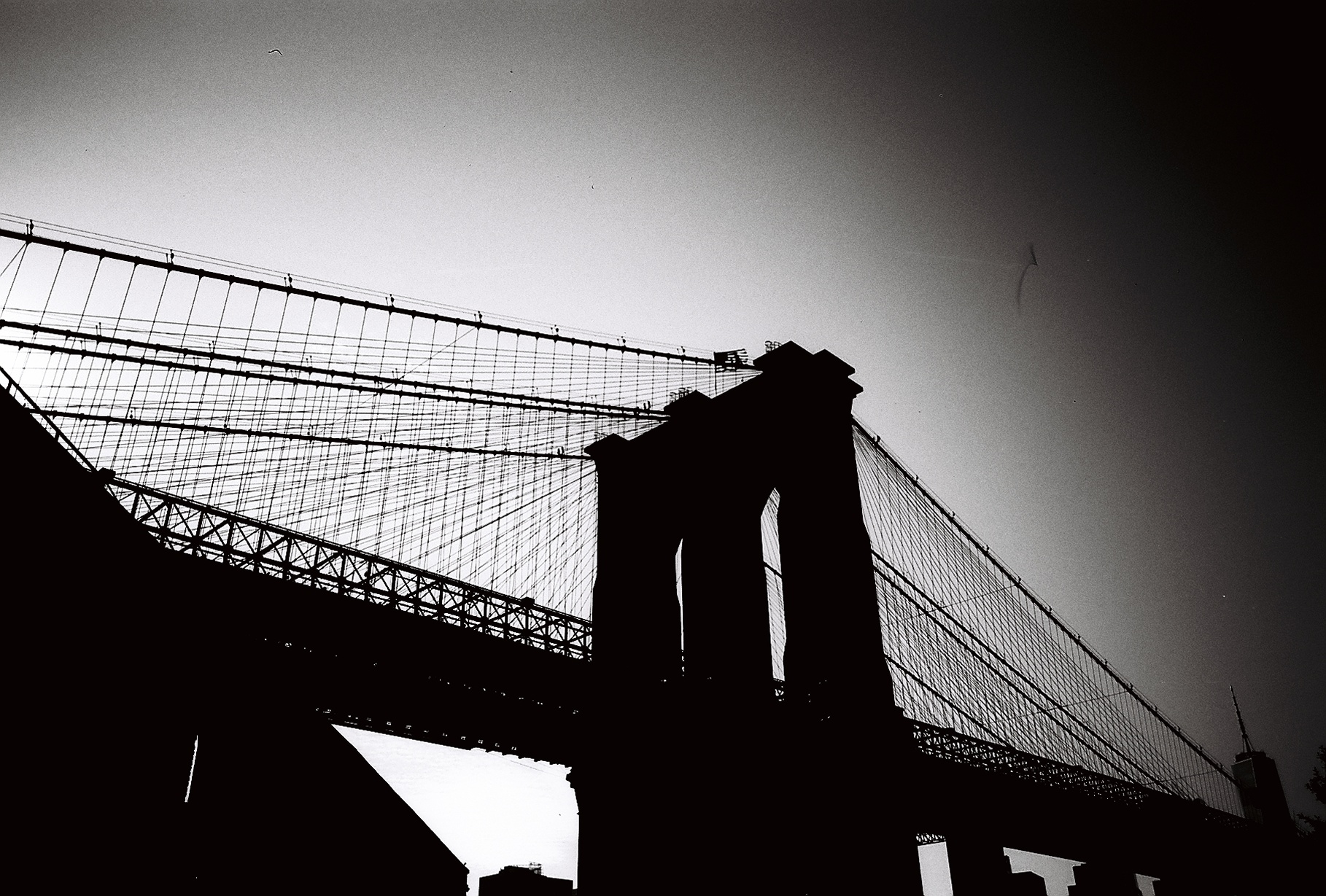 Silhouette of bridge (Pic: Dannah Gottlieb)