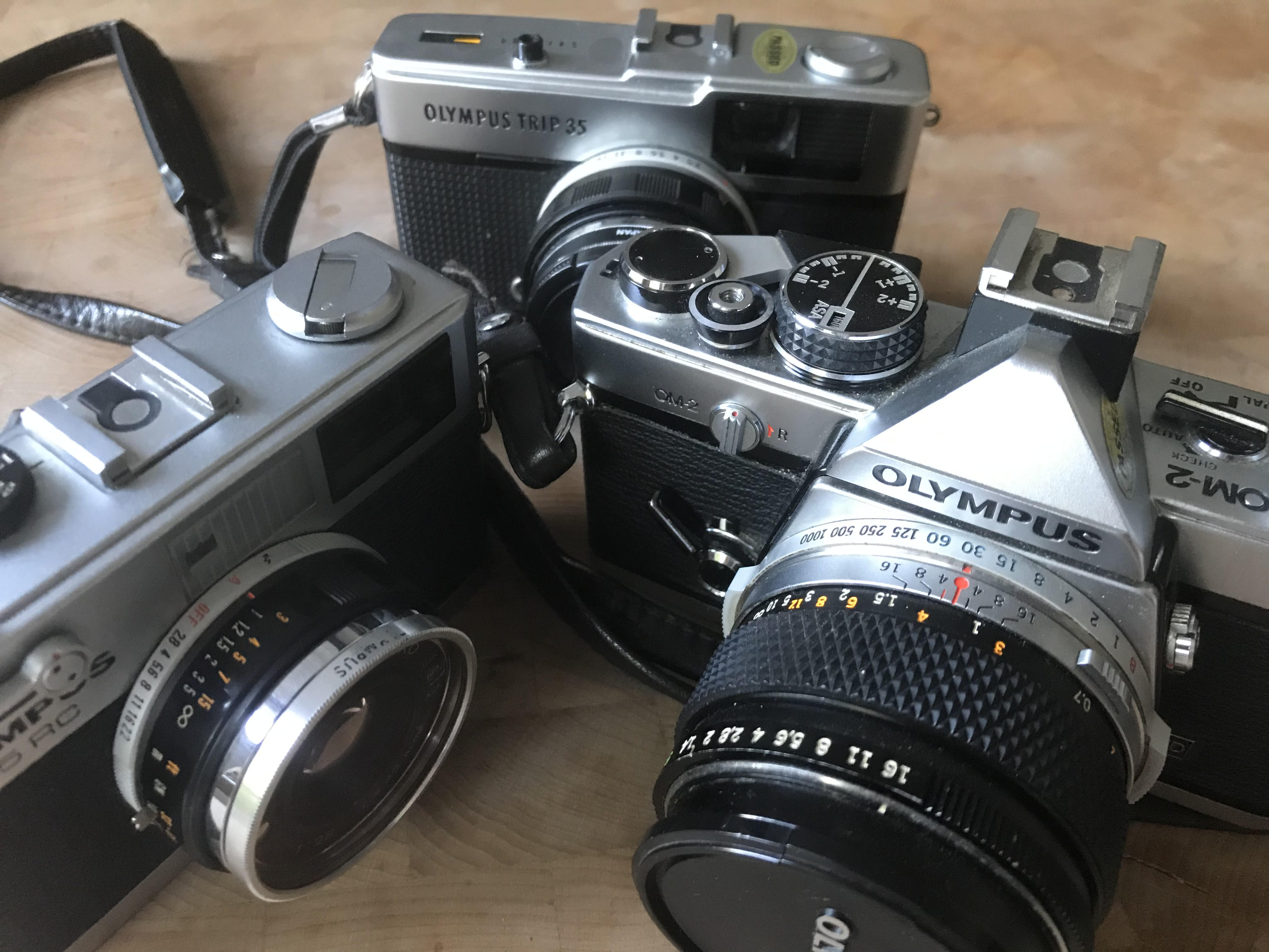 Trio of Olympus cameras (Pic: Stephen Dowling)