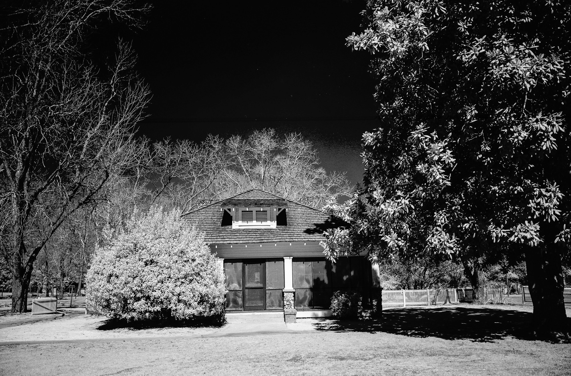House and trees (Pic: Neal Wellons)