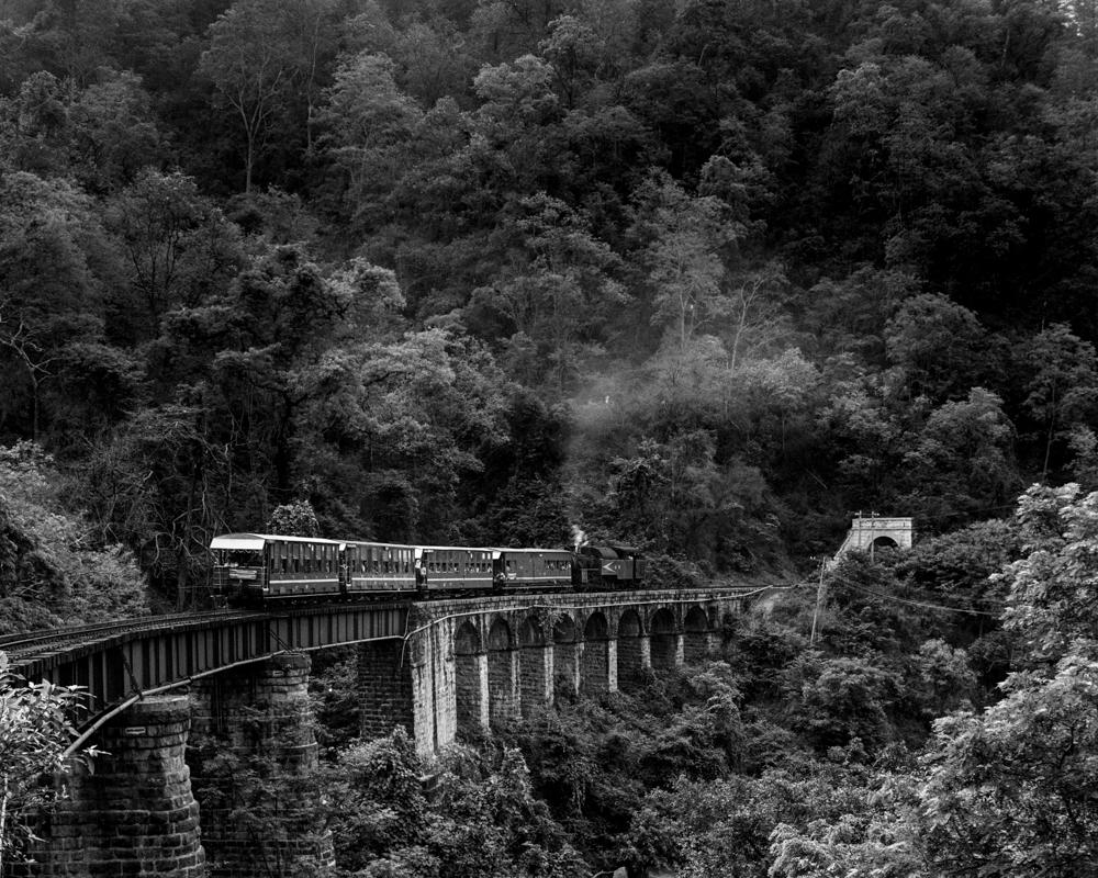 Train on forest viaduct (Pic: Nandakumar Narasimhan)