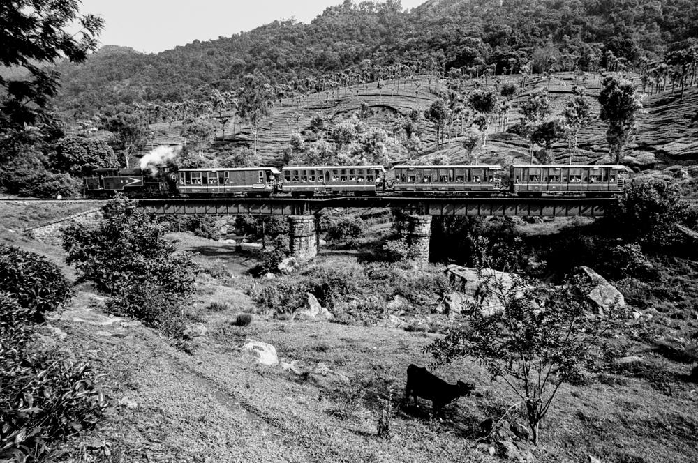 Train travelling past forested hill (Pic: Nandakumar Narasimhan)