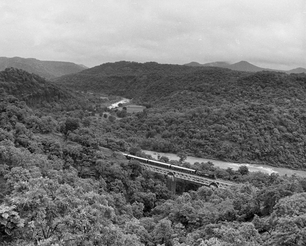 Train in dense forest (Pic: Nandakumar Narasimhan)