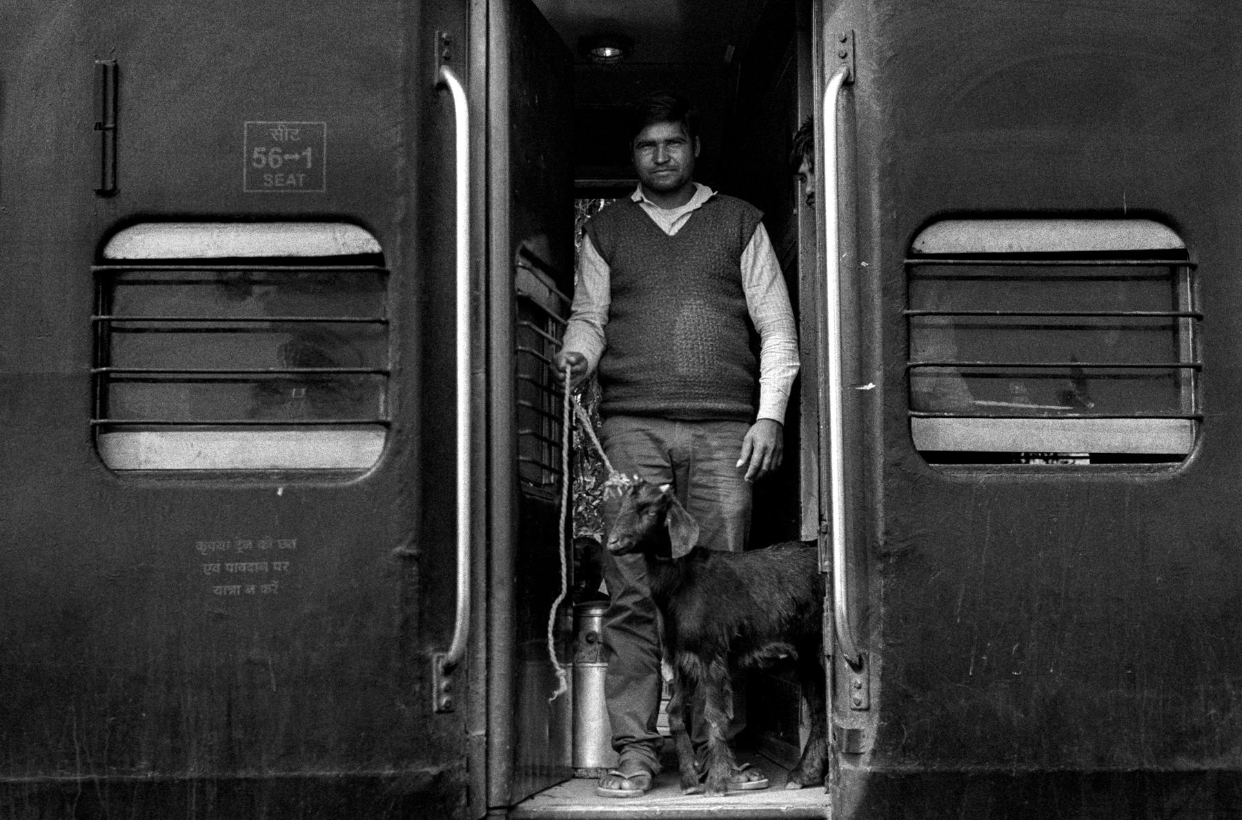 Goat and man in doorway (Pic: Nandakumar Narasimhan)
