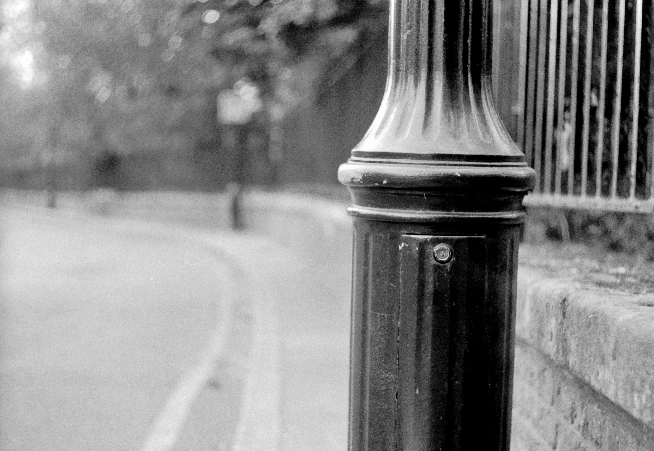 Lamp post and railing fence (Pic: Stephen Dowling)