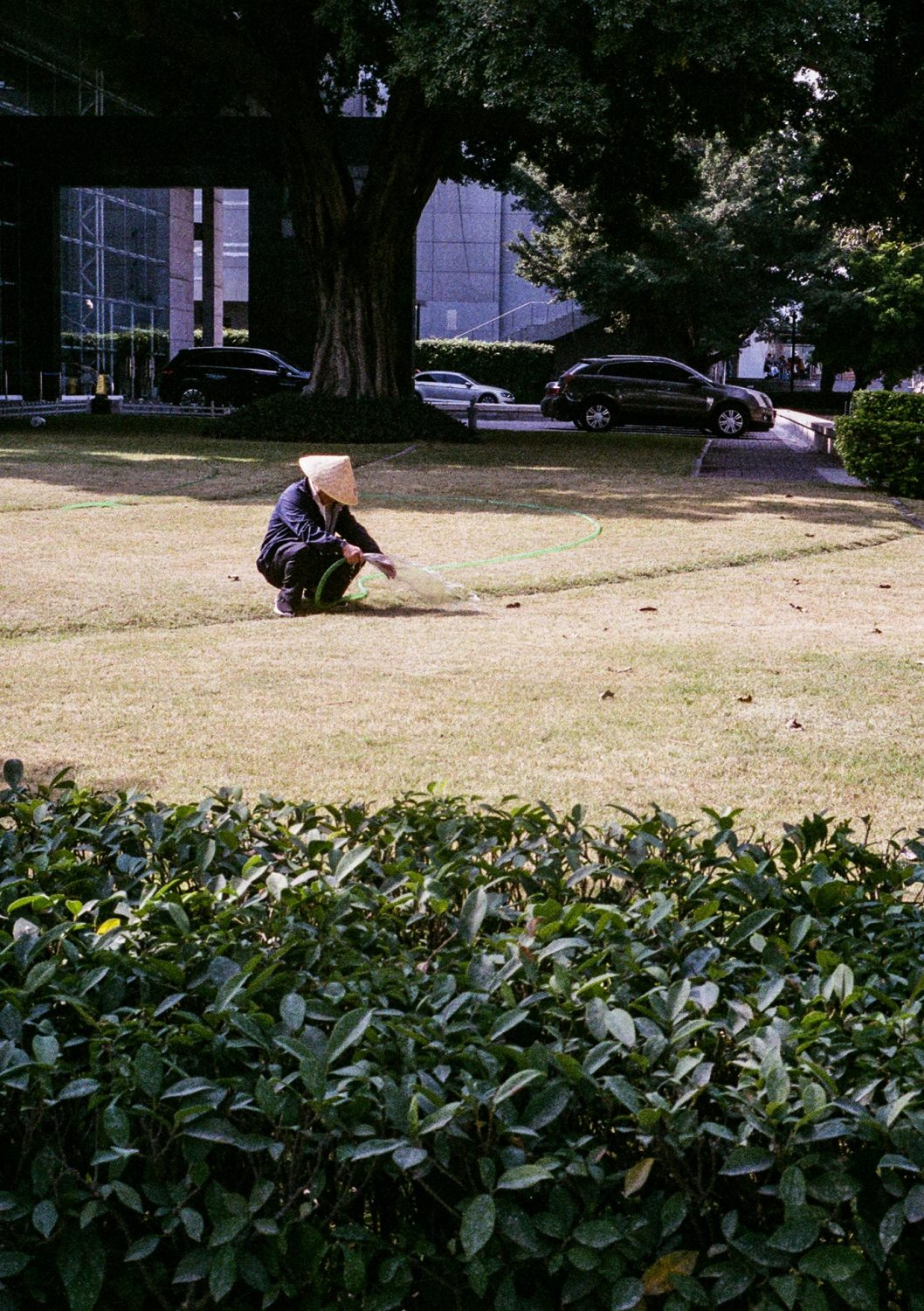 Person crouching on grass (Pic: Jay SE1)
